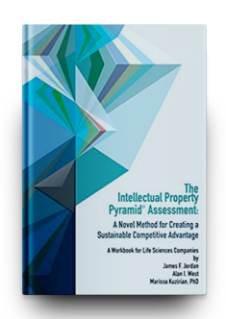 The Intellectual Property Pyramid© Assessment: A Novel Method for Creating a Sustainable Competitive Advantage
